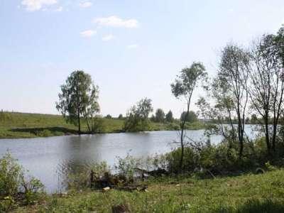 Посёлок Южные озёра, Домов/участков: 215