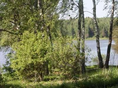 Посёлок Южные озёра, Район: Чеховский